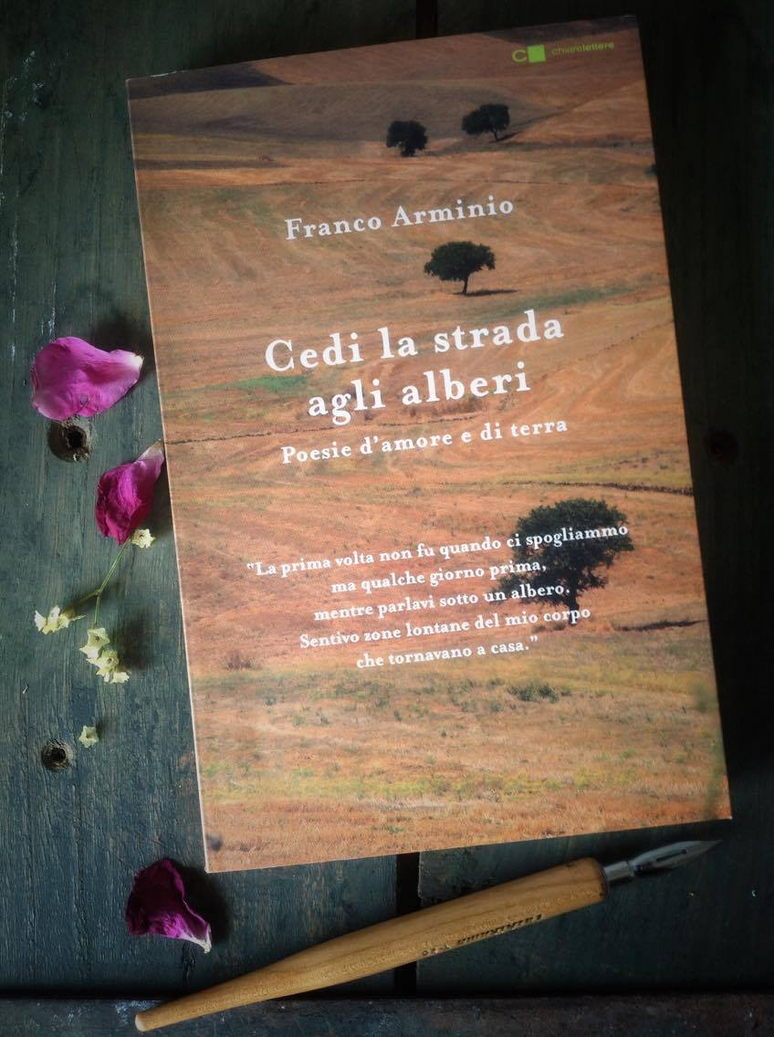 Franco Arminio poesie